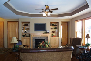 Entertainment Centers and Fireplaces Photos