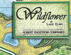 Wildflower Lake Elmo